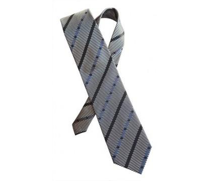 Souvenir Silk Tie